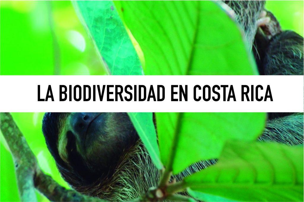 Costa Rica, que ver y que hacer.